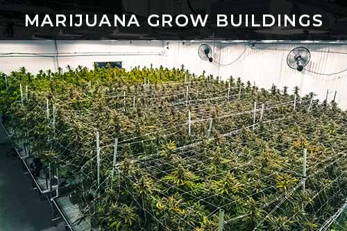 marijuana grow buildings